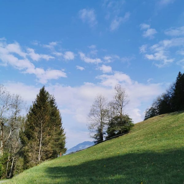 #muttersberg #gnüssa #myortovoxstory #visitvorarlberg Hoher Fraßen