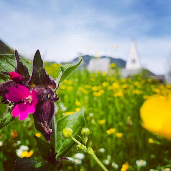 Mai(n) Brand. Freuen uns auf euch! #ferien #ferienhaus #feriendaheim #urlaub2020 #urlaubzuhause #brand #brandnertal ...