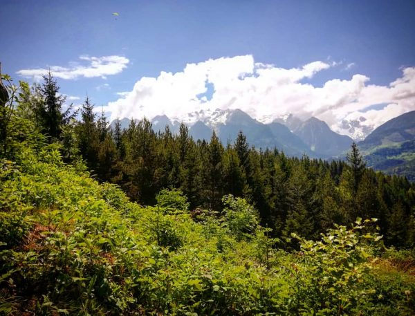 Ein Ländle Hike #igersviennaontour #wanderlust #guatischgsi #muttersberg #instagood #hernoisisois abers Ländle isch scho schö #hikevibes Muttersberg, Vorarlberg,...