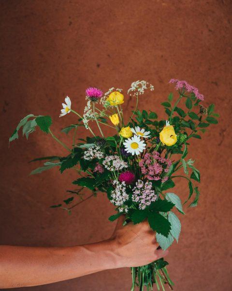 Wir lieben Wiesenblumen! #auroralech #bergefürdieseele #wiesenblumen #lovelydetails #visitvorarlberg #dekoration #nature #beautiful #hotel 📸 ...
