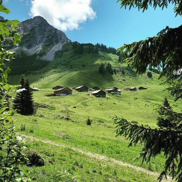 Die wunderschöne Steris Alpe im Großen Walsertal 💚 die letzte Wanderung hat mir ...