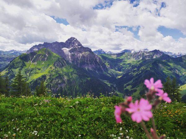 #walmendingerhorn #österreich #mittelberg #kleinwalsertal #berge #mountains