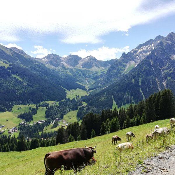 #holidaypics #allgäu #wanderliebe #mountainsview #family #naturpur #hörnertour #kleinwalsertal #petslove #herzsee #kempten #fischenimallgäu #nofilter ...