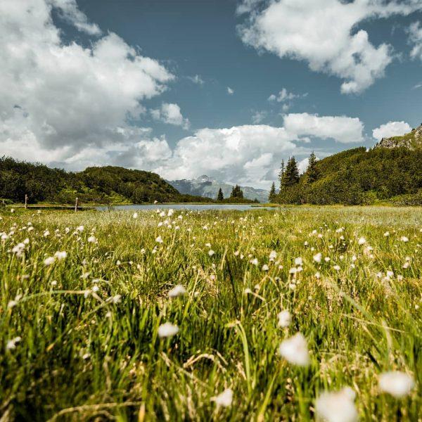Beautiful Nature.... . . . . #visittirol #visitaustria #lovetirol #loveaustria #visitvorarlberg #vorarlberg #galtür ...