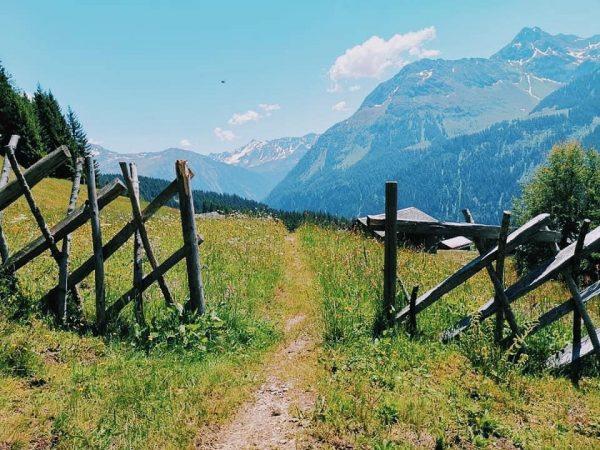 Der Weg ist das Ziel. #wandern #wanderurlaub #urlaubimmontafon #urlaubinösterreich #urlaubindenbergen #urlaubmithund #wulfeniamontafon #gargellen ...