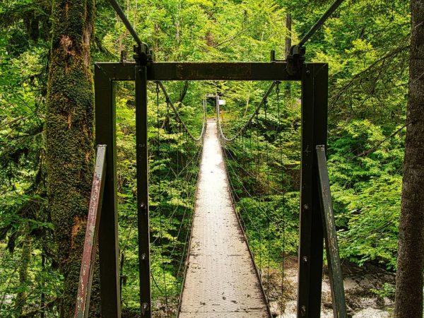 Quelltuff Wanderung von Lingenau/Egg im Bregenzerwald - Teil 2 - #bregenzerwald #wanderninösterreich #vorarlberg ...