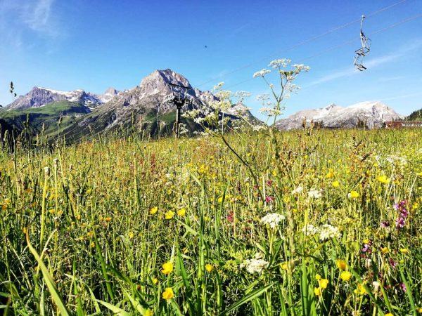 #lech #bergsommer #oberlech #Spaziergang ⛰️☀️💞🙏 Oberlech, Vorarlberg, Austria