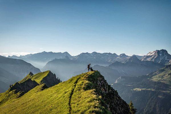 Bee free... 😍 #austria #vorarlberg #visitbregenzerwald #naturphotography #naturlovers #alpenliebe #lebenfürdieberge #amazingview #discoveraustria #landscape #weloveaustria #adventuretime #getoutside #bealpine...