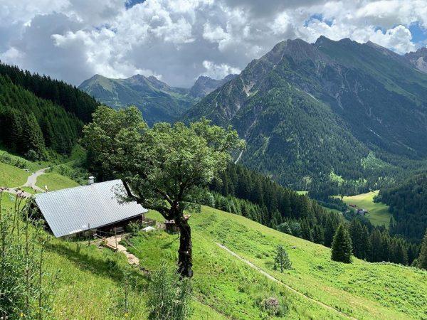 Auf dem Höhenweg #kleinwalsertal #mittelberg #wanderurlaub #erholungpur #genusswandern Mittelberg Kleinwalsertal