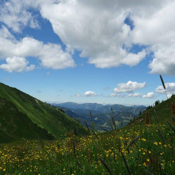 Sonne satt im Kleinwalsertal #kleinwalsertaltravel #kleinwalsertal #waseinwetter #kanzelwand #schlappoltsee #mountain #hiking #wandern #berge #bergliebe #natur #naturliebe