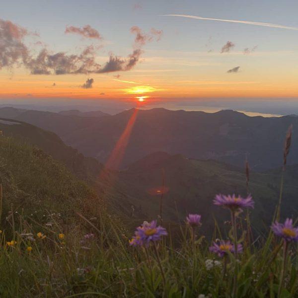 Sonnenuntergang auf der Mittagspitze #damülsfaschina #visitbregenzerwald #venividivorarlberg #sunset #bergliebe Damülser Mittagsspitze