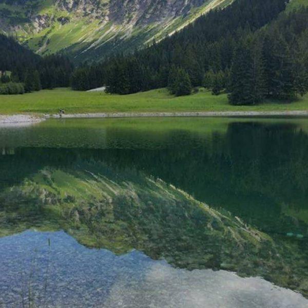 . . 🌸 Urlaubsbild Tag 6🌸. . . 🌸 Wenn man vom Nebelhorn ...