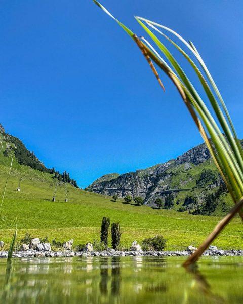 🌞🐠💦 #visitvorarlberg #venividivorarlberg #arlberg #naturbadeteich #pool #pooldays #summervibes #motorradtour #urlaubindenbergen #myhomeiswherethemountainsare #lech #zürs ...