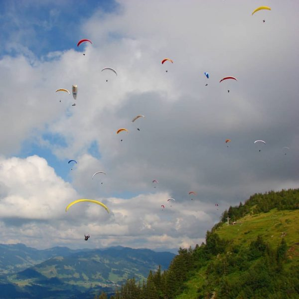 Fliegen wie ein Vogel Sobald das Wetter gut ist kann man auf der ...