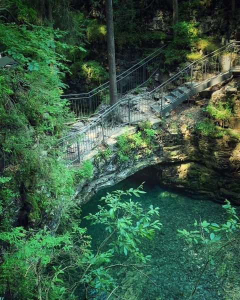 Schwarzwasserbach - Naturbrücke #kleinwalsertal #riezlern #wanderurlauber #erholungpur #schwarzwasserbach #naturbrücke