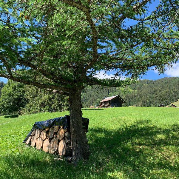 SchwarzwasserbachtL #kleinwalsertal #riezlern #wanderurlauber #erholungpur #schwarzwasserbach