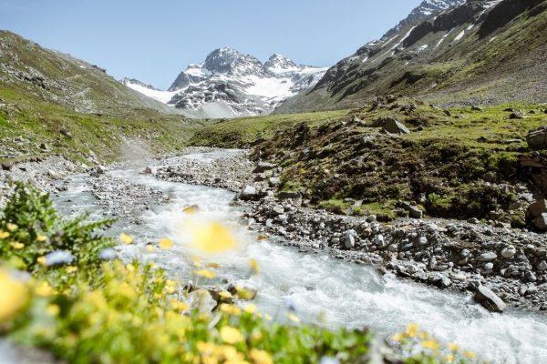Rein in die Wanderschuhe, rauf auf die Berge! Welche Montafoner Gipfel hast Du ...