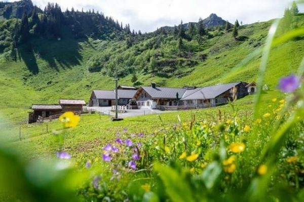 Genusstunden am Sonnenbalkon Montafon: Die Alpe Latons auf 1.680 Meter mit ihrer aussichtsreichen ...