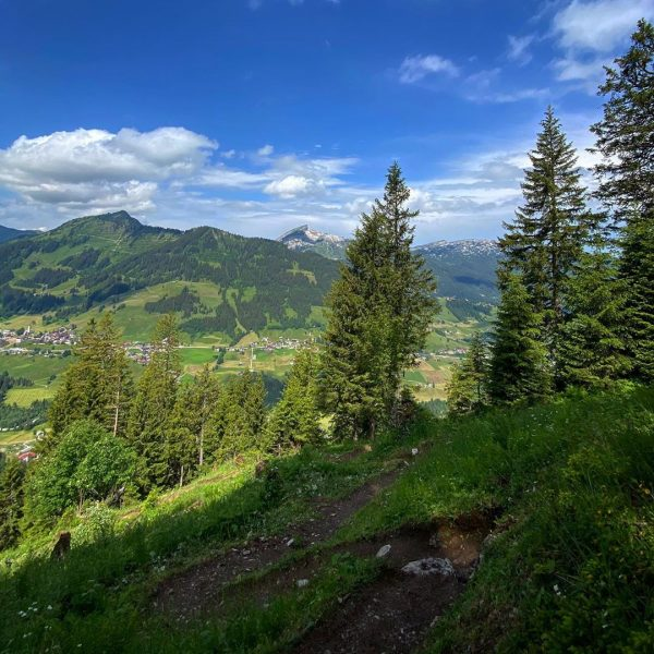 Hike more - worry less ☀️ • Perfekter Blick auf mein nächstes Wanderziel ...