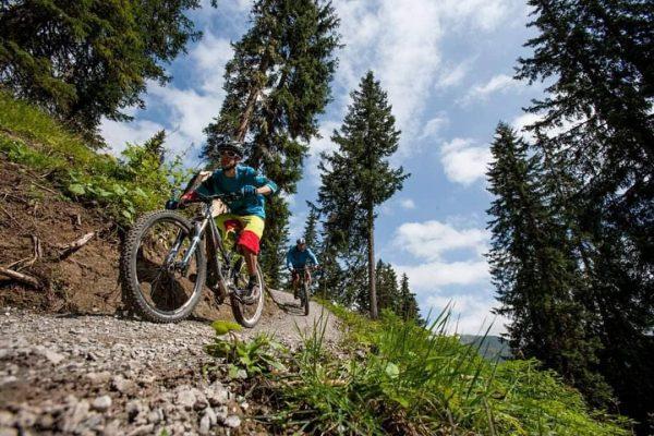 🚵♂️🚡Bikestrecke Burgwald-Trail: Die harte Arbeit von unseren Shapern auf der Bikestrecke bei der ...
