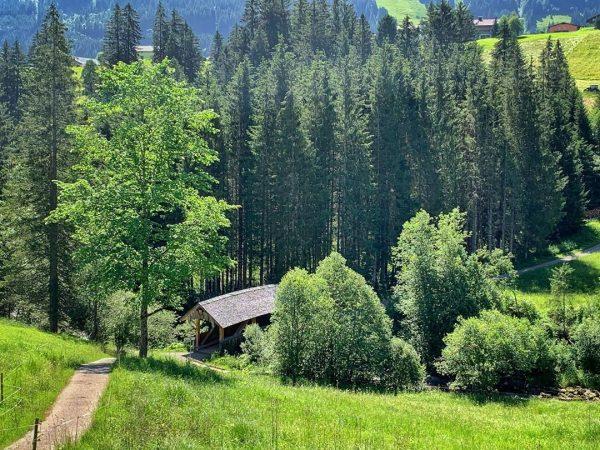 Schwarzwasserbachbrücke - Höfle #kleinwalsertal #riezlern #wanderurlauber #erholungpur #schwarzwasserbach