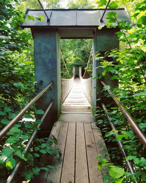#hittisau #wasserwanderweg #hängebrücke #suspensionbridge #bregenzerwald #nature #landscape #skyline #photography #naturephotography #walking #landscapephotography #austria ...