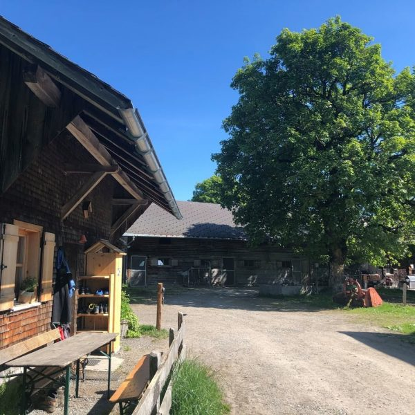 """#18 Sennalpe der KäseStrasse Bregenzerwald """"Alpe Oberlose"""". Das Bödele ist ein traumhaftes Wanderparadies. ..."""