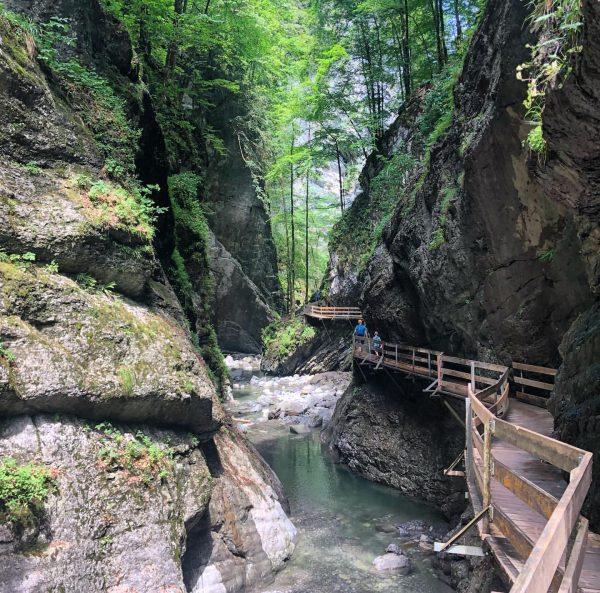 Today we walked in the Rappenlochschlucht and the Alplochschlucht (pictured), in Dornbirn. The ...