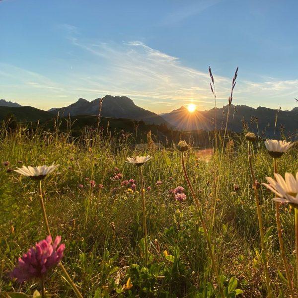 Guten Morgen 🌞 . . . . . #sonnenaufgang #berge #bergliebe #stille #zeitfürmich #qualetytime #sunrise_sunsets #bergwelt #venividivorarlberg...