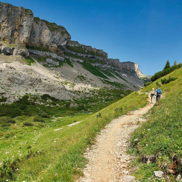 Tipp zum Wochenende: Der Hohe Ifen zählt mit zu den markantesten Gipfeln rund ...