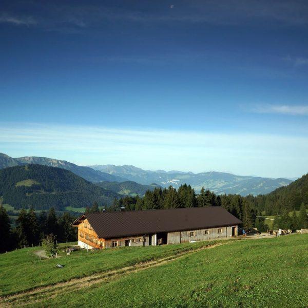 """#24 Sennalpe der KäseStrasse Bregenzerwald """"Alpe Schwarzenberger Platte"""". Von Mitte Mai bis Anfang ..."""