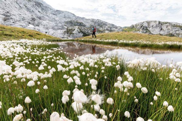 Mit 1.160 Kilometer markierten Wanderwegen ist das Montafon der ideale Ausgangsort für Wanderungen in allen Höhenlagen und...