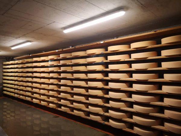 Unser Käsekeller auf der Alpe füllt sich 🧀😊 Schon bald können wir den ersten Laib anschneiden 😋...