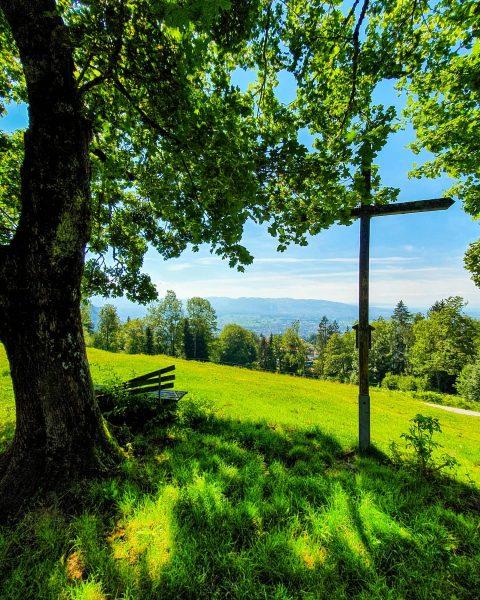 Explore the montains ⛰ #kehlegg #dornbirn #vorarlberg #austria . . . . . ...