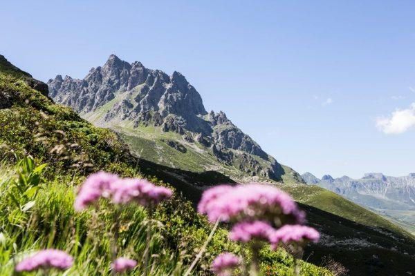 Sanft und stolz thront die imposante Madrisa oberhalb des kleinen Bergbauerndorfs Gargellen. ⛰😍 ...