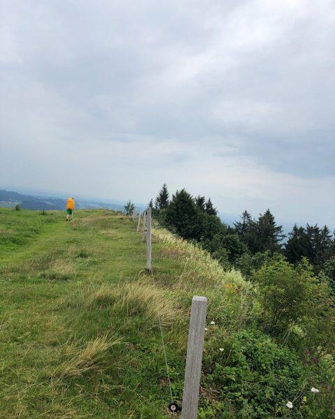 15|07|20. Lasset den Spaß beginnen: vom Pfänder über den Hirschberg nach Deutschland (Scheffau), ...