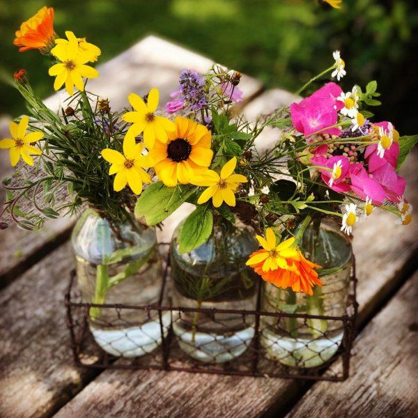Schnell in den Bauerngarten, und schon haben wir einen kleinen Blumengruß auf dem Tisch. Also bei uns...