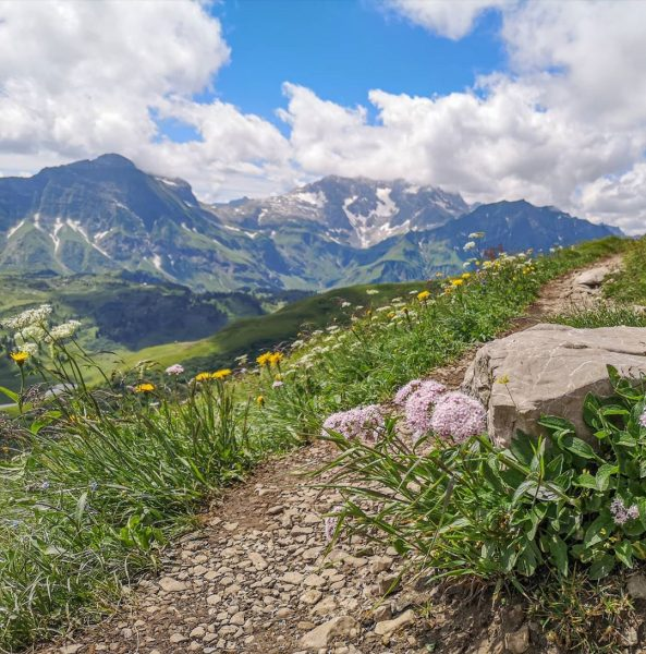 Auf unserer Wanderung rund um den Widderstein war für uns der Weg das ...