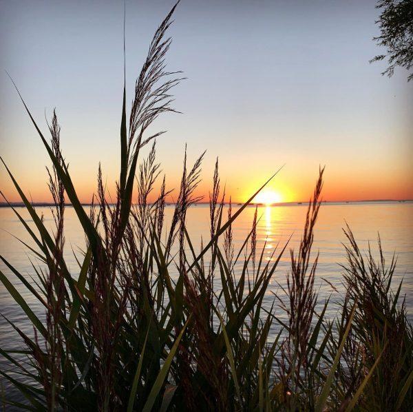 #undnocheinsonnenuntergangsbild #sundowner #bodensee #stimmungsvoll wie immer 😍 #farben #horizont #sonnenuntergang #bregenz #bodensee #bodenseebilder #bodenseeliebe #bodenseepage #vorarlberg #colorful...