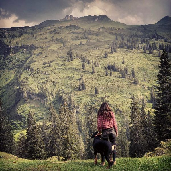 Amazing landscape. #bregenzerwald #vorarlberg #bergjagd #blattzeit #rehbock #huntingismypassion #iloveaustria #bernersennenhund #meandmydog #huntress #beautifulnature ...