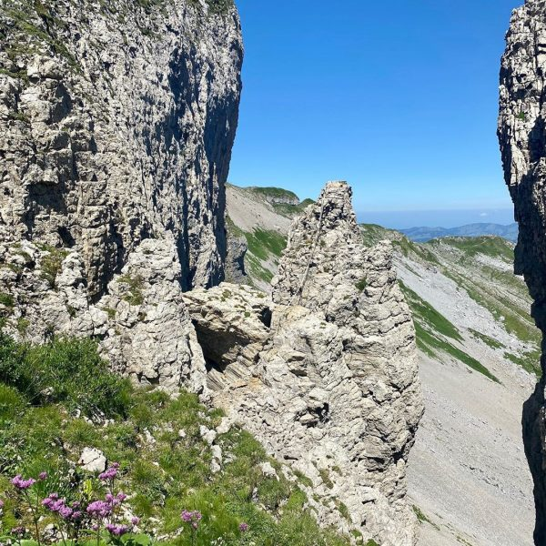 #wandern #naturelovers #naturephotography #venividivorarlberg #whereyourheartbeats #kleinwalsertal #ifen #okbergbahnen Hoher Ifen