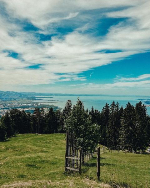 Ich möchte zurück 🥺 28 Grad und Sonnenschein ☀️ #lisaliebt #pfänder #bregenz #mountains ...