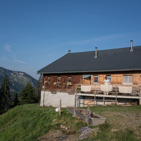 """#29 Sennalpe der KäseStrasse Bregenzerwald """"Alpe Untere Hinteregg"""". Die Brüder Oskar und Wolfgang ..."""