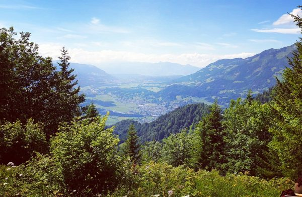 Wir lassen es heute ruhig angehen. Nur ein kleiner Rundgang am #Muttersberg. Sommer ...