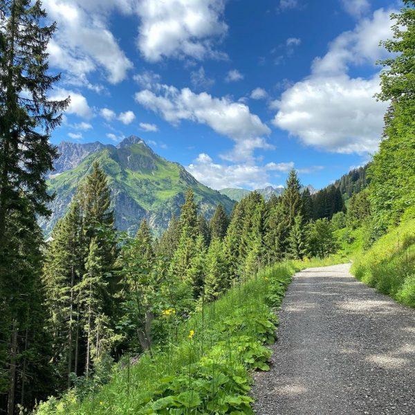 Entspannter Spaziergang in den Bergen. Geht auch ohne viele Höhenmeter. #urlaub #österreich🇦🇹 #kleinwalsertal ...