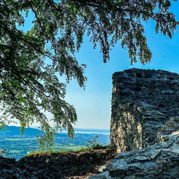 #paradise #ausblick #weitblick #bodensee #schlossberg #burgruine #altems #hohenems #venividivorarlberg Altems - Geschichte lebt.