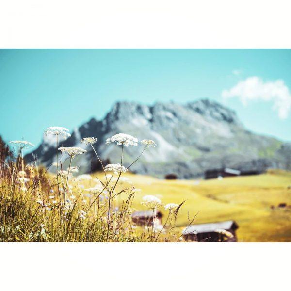 Oberlech, Vorarlberg, 🇦🇹 #mountains #mountainlovers #austria #summer #happy #nature #naturelove #lechzuers #hike #hiking ...