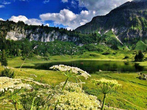 Hot day - lake calling! 🏊♀️ #bergzeitfuerzuagroaste #genusswandern #vorarlberg #vorarlbergwandern #lech #warth #körbersee ...