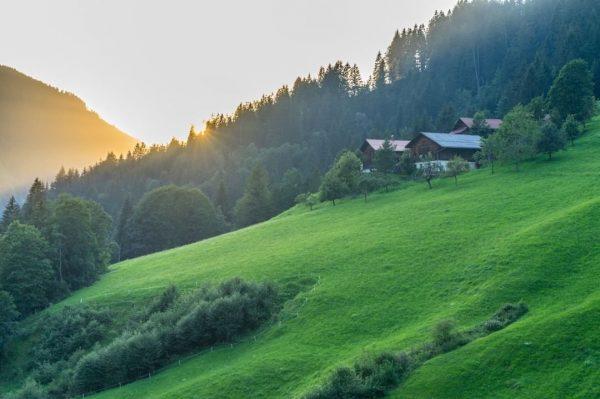 The last warming sun rays while returning to Marul #vorarlberg #visitvorarlberg #venividivorarlberg #großwalsertal ...