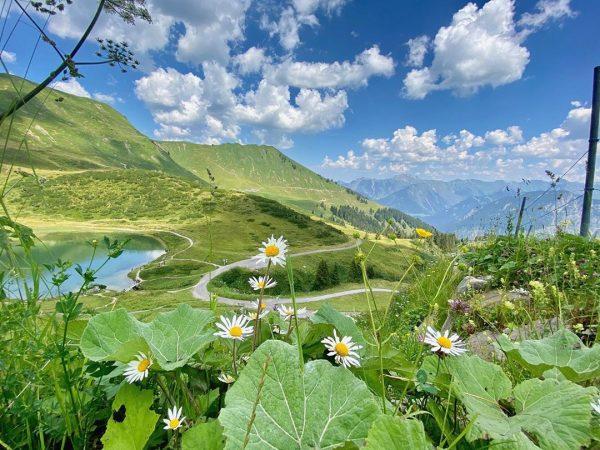 Ausblick vom #fellhorn bei der #bergstation 💚 Da waren wir gestern noch schnell. ...